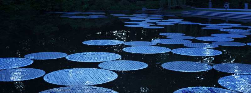 Longwood Garden Waterlillies installation