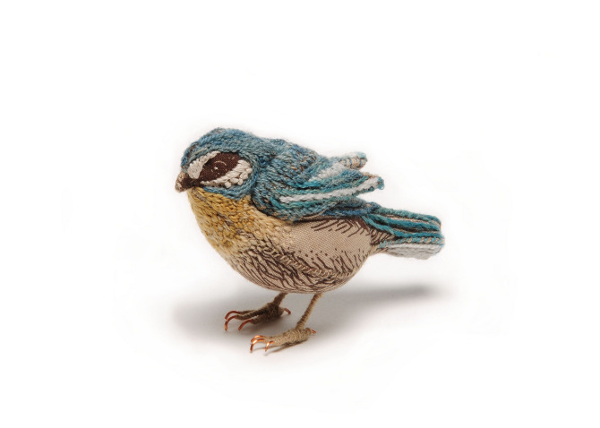 Embroidered Fabric Blue Tit, Catherine Frere-Smith